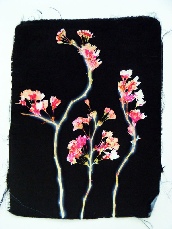 Web 4 | 28cm x 41cm Photographic Print/ Paint on Silk