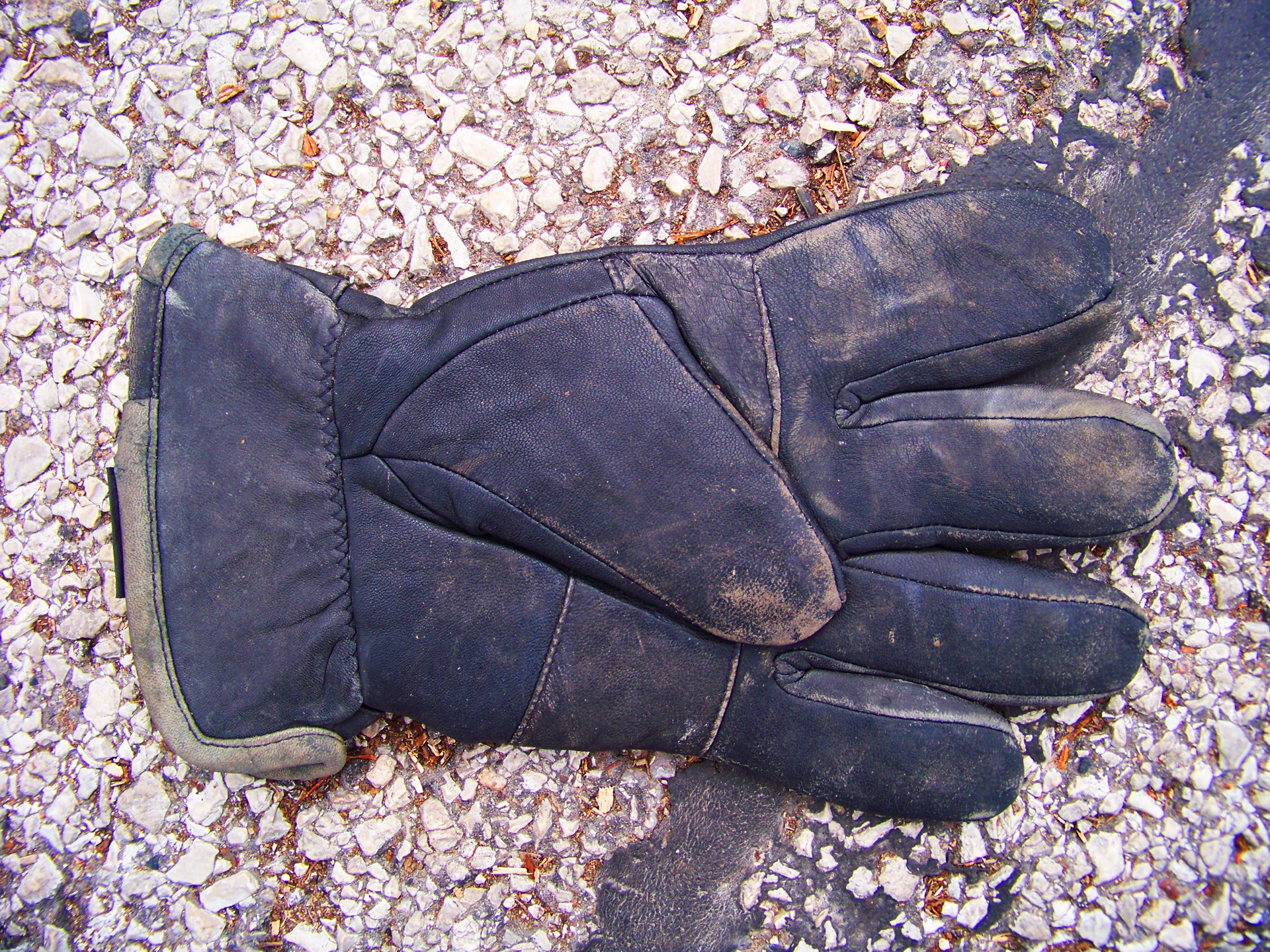 Glove April 03.jpg