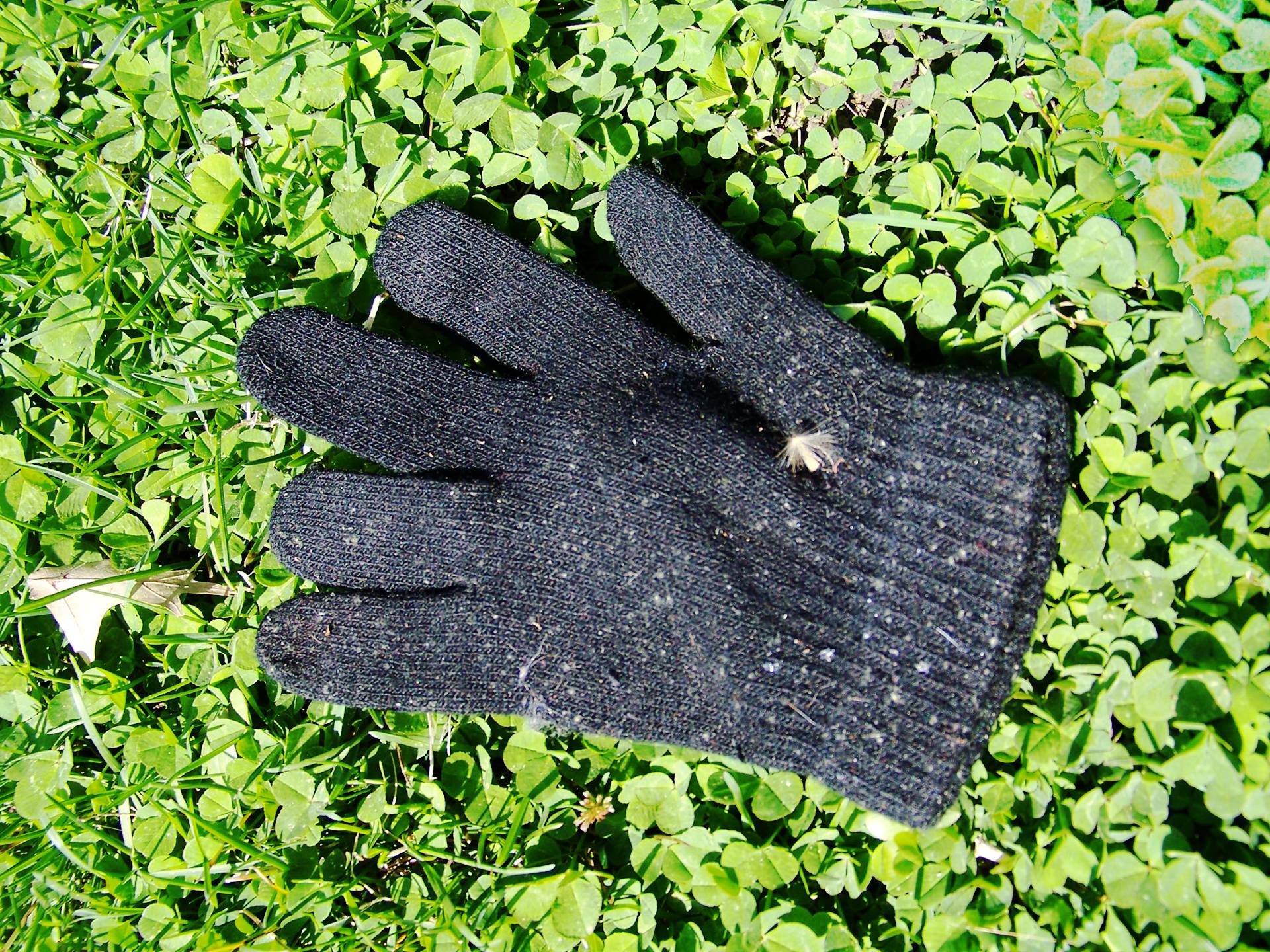 Glove Clover.jpg