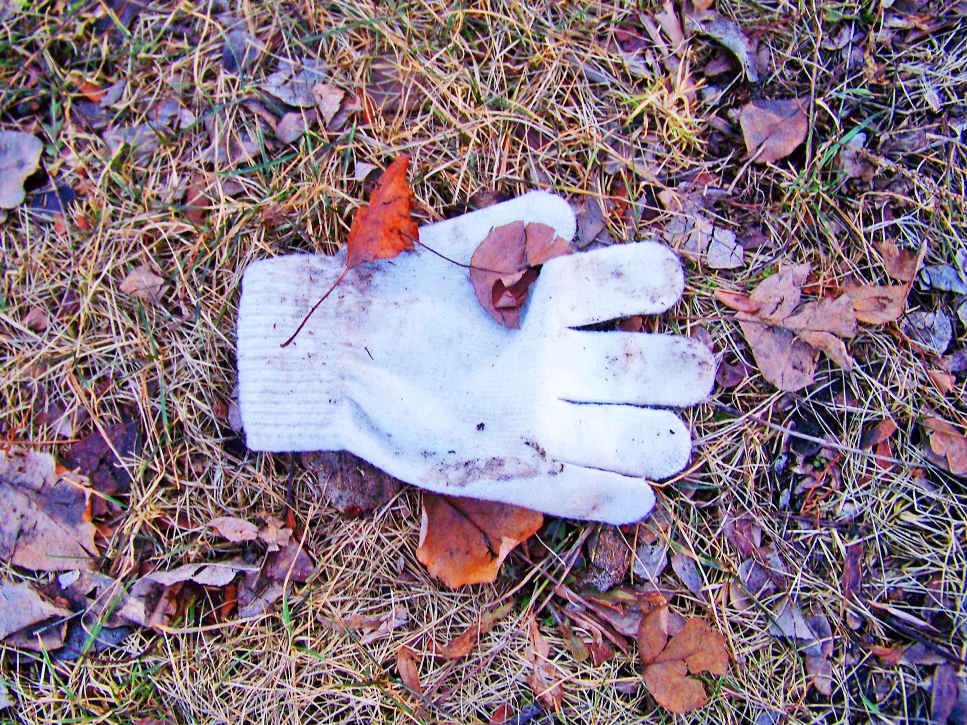 Glove Downs.jpg