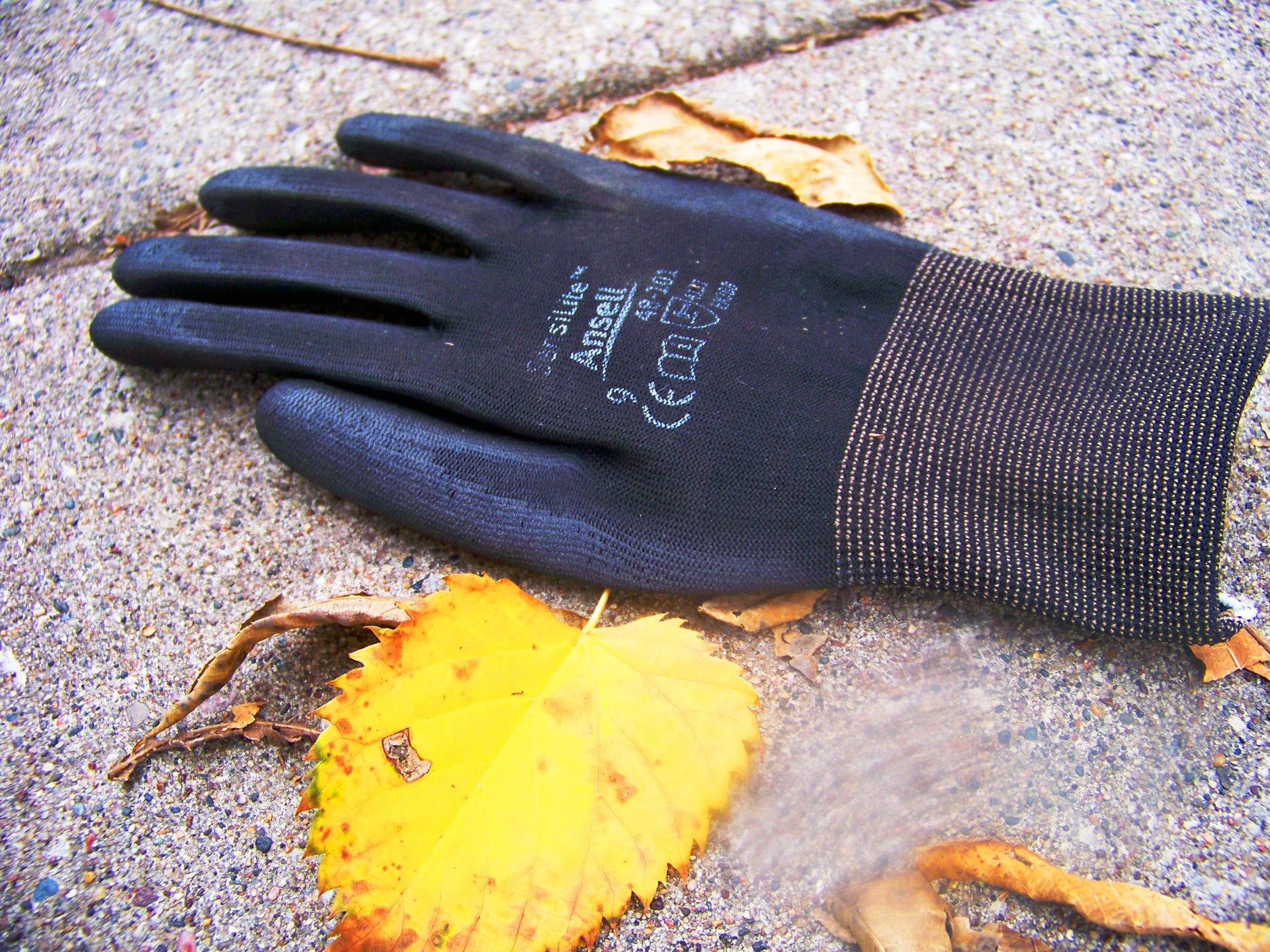 Glove yellow leaf.jpg