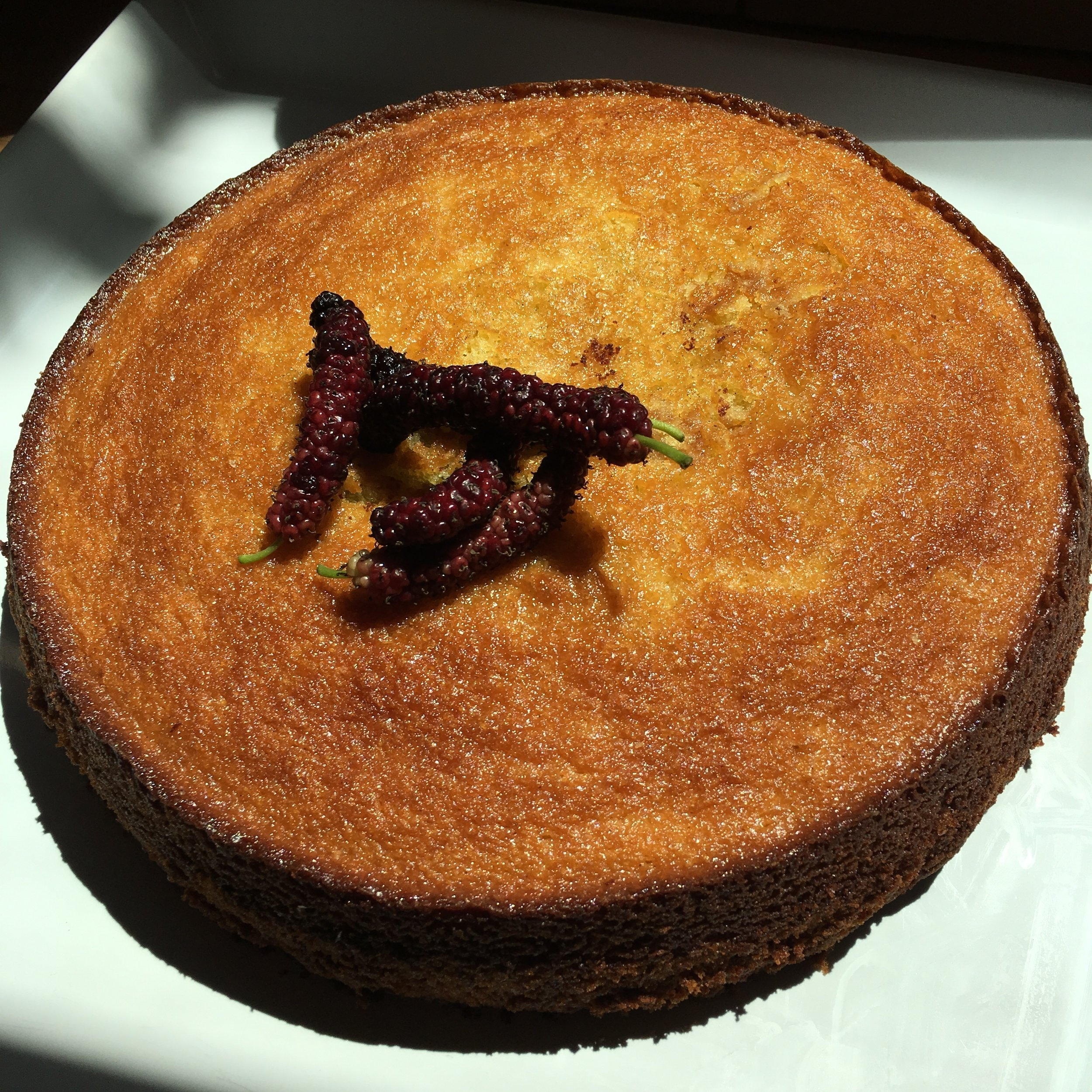 olive oil cake with Pakistani mulberries