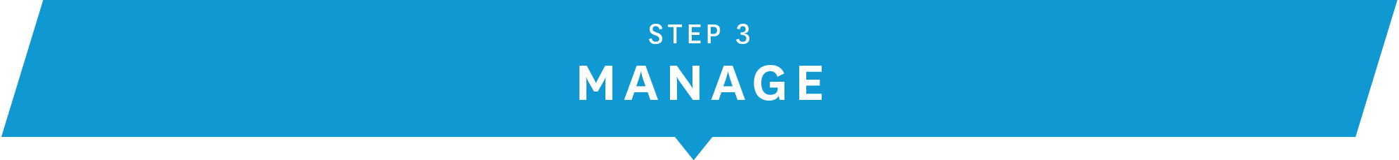 step-3-manage