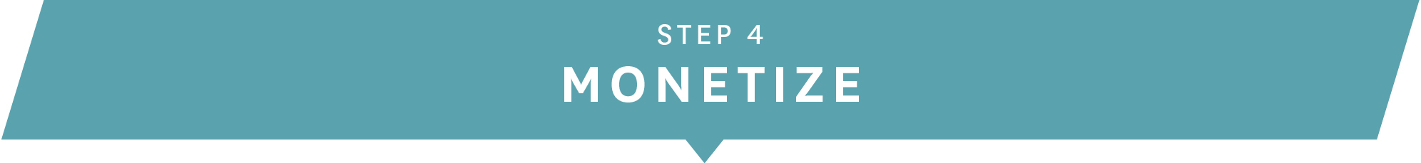 step-4-monetize