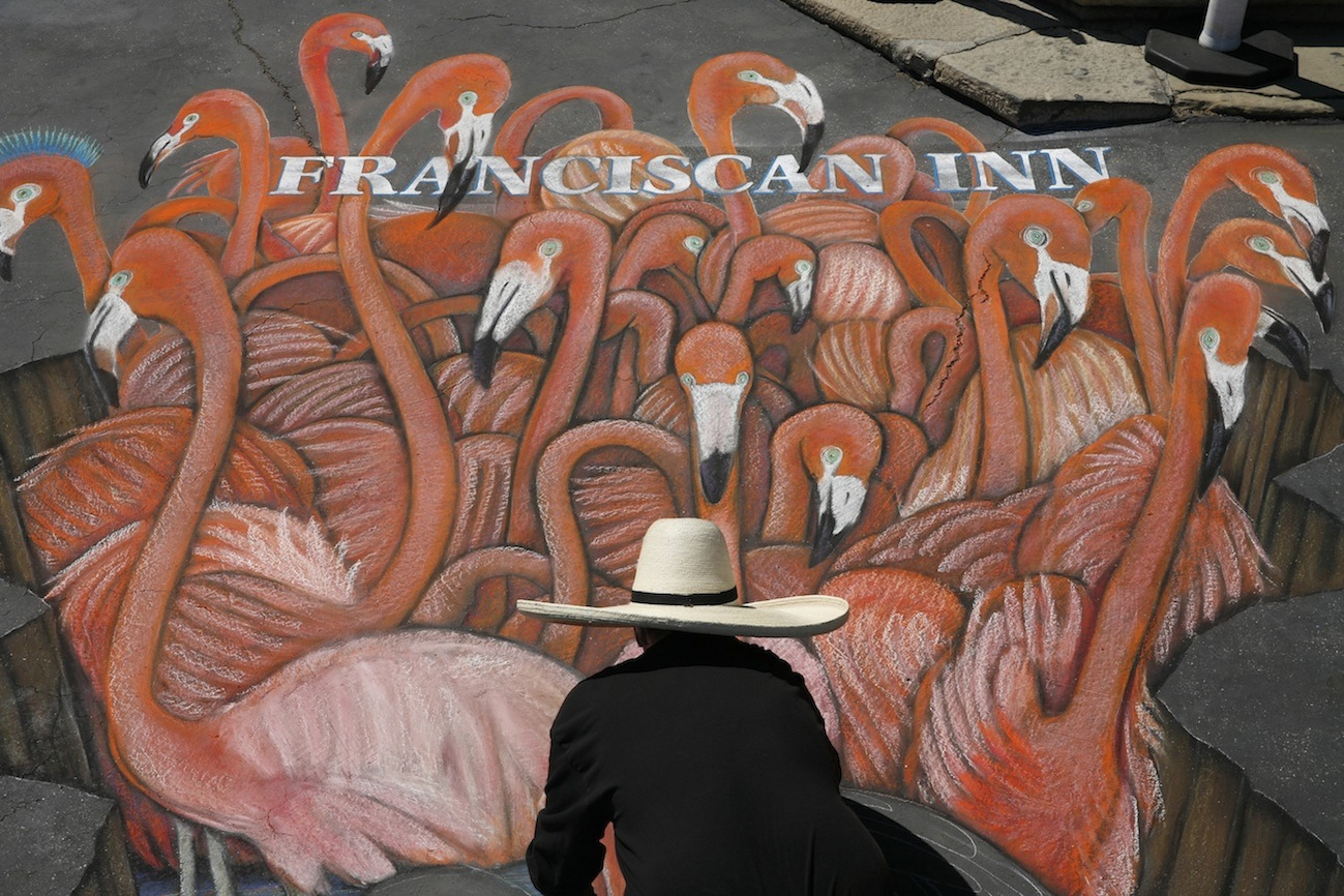 mg_7353_flamingos-artist.jpg
