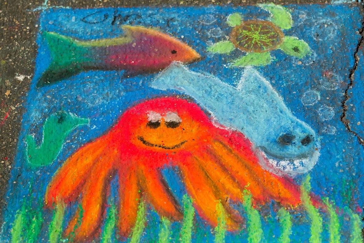 amy-690_V1B4633_kid_squares_octopus.jpg