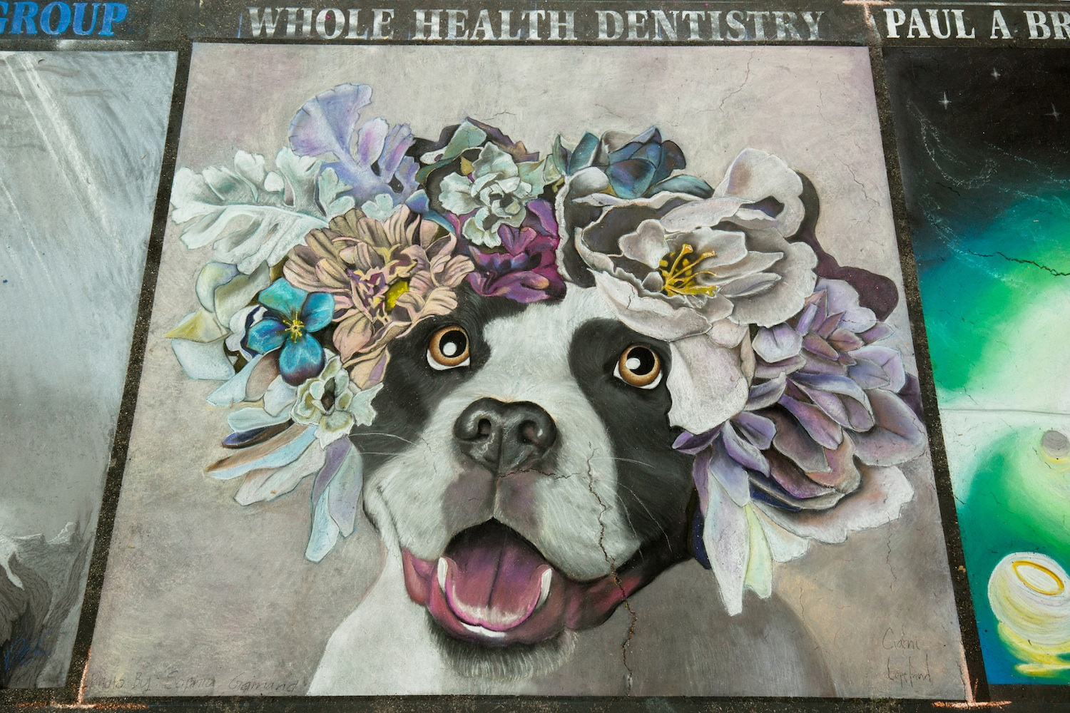 Amy-284-1731_Whole_Health_Dentistry.jpg