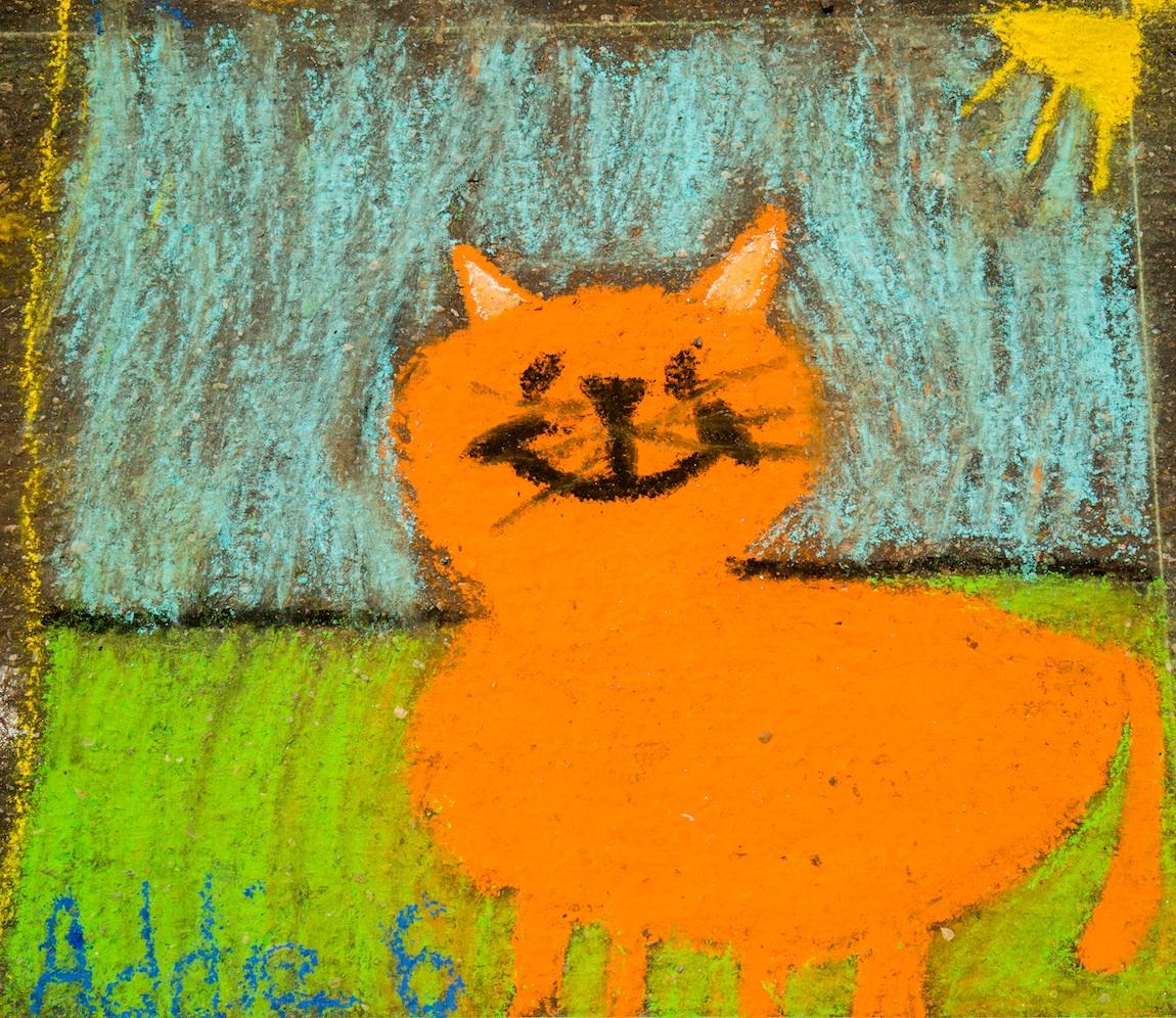 Amy-838-_69A0637_Orange_cat.jpg