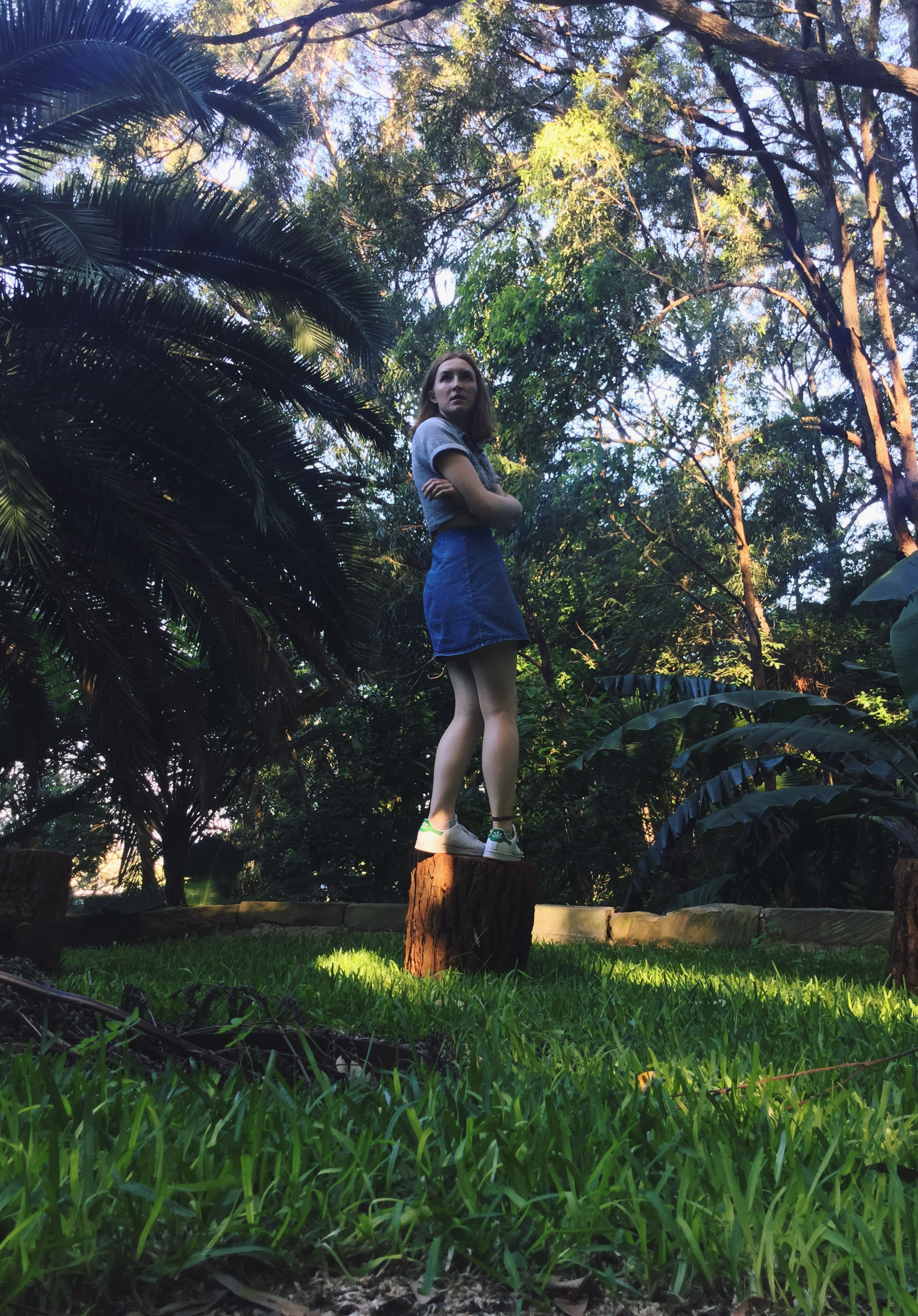 that relatable moment when ur taking a photo and a kookaburra scares the living daylights outta u