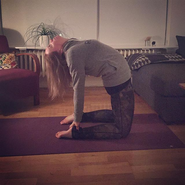 Dagur 6 í yogaáskorun - camel 🐪#soliryogaaskorun2017 #day6 #ustrasana #yoga