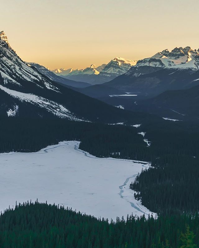 Peyto Sunrise.  I'm sure I'm breaking some unwritten Instagram rules here...but, I want to show you three shots taken from the exact same spot with entirely different focal lengths. The first photo was at 200mm, cropped down to about a 300mm equivalent. This shot was taken at 70mm. The next one I'll post in 4 hours taken at 16mm. Let me know which you enjoy the most! ⠀⠀⠀⠀⠀⠀⠀⠀⠀⠀⠀⠀ ••••• 🏷: #sonyalpha #sonyimages #landscapehunter #earthporn #sharecangeo #cangeotravel #explorecanada #imagesofcanada #explorealberta #travelalberta #wanderlustalberta  #banff #banffnationalpark #mybanff #parkscanada