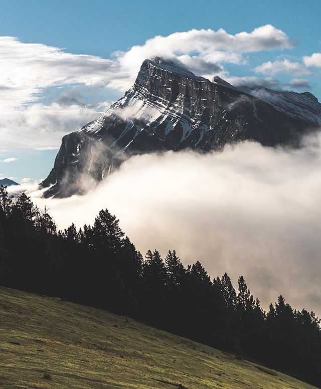 Banff National Park was out of its mind this morning. Rolling clouds and fog from last nights rain, vibrant skies, animals everywhere. This place is just magic.  #sonyalpha #sonyimages #landscapehunter #earthporn#exploretocreate #roamtheplanet #justgoshoot #ourplanetdaily #natgeotravel #sharecangeo #cangeotravel #explorecanada #imagesofcanada #explorealberta #travelalberta #wanderlustalberta #banff #banffnationalpark #mybanff #parkscanada