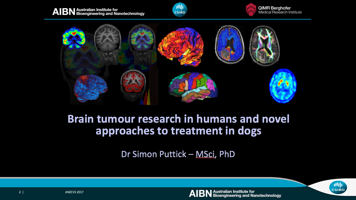 Dr Simon Puttick's presentation on brain tumour research was well recieved.