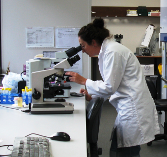 EL - microscope & tech.png