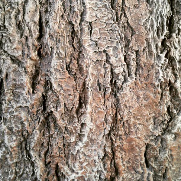 Epoxy Bark Artificial Wood