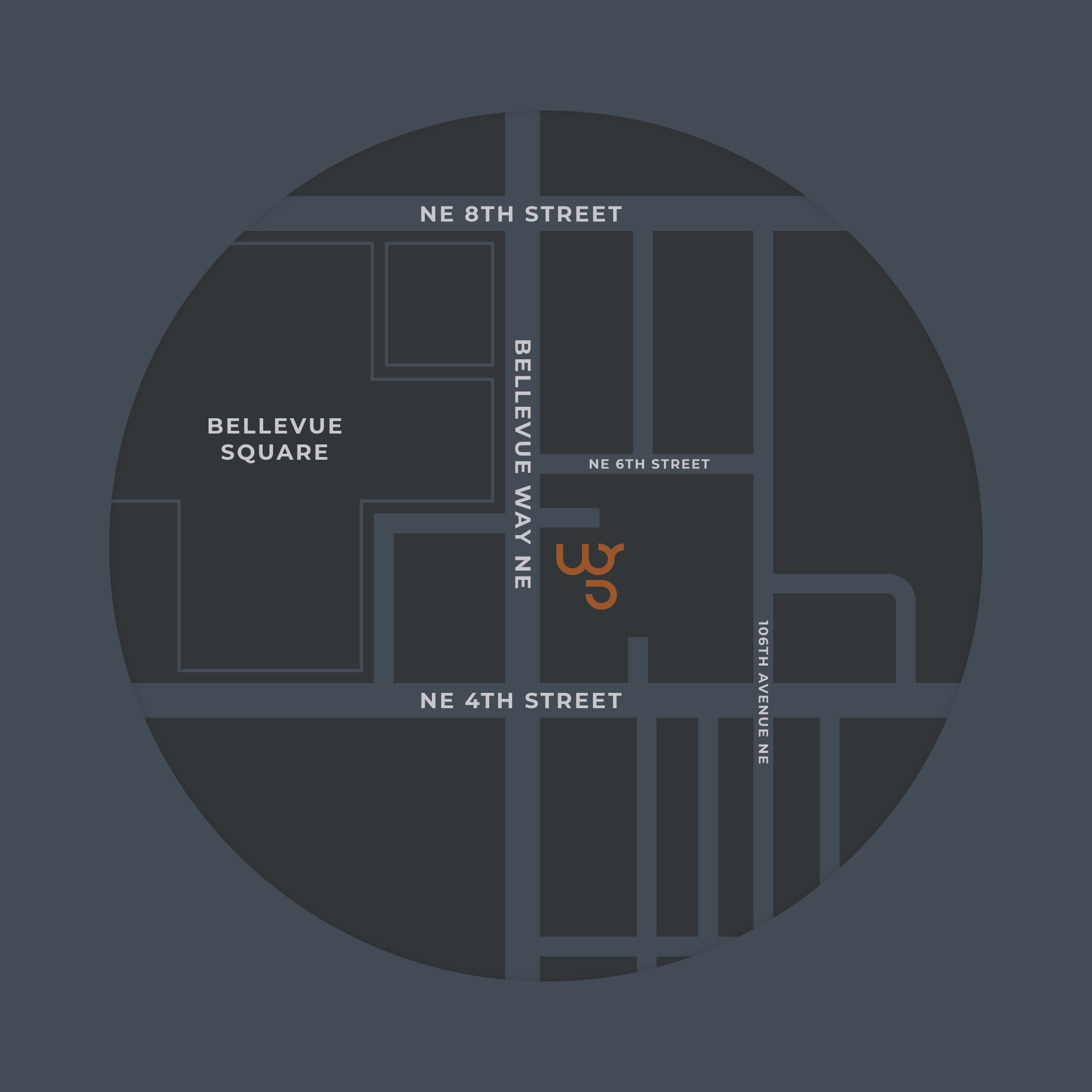 map_bellevue_3.jpg