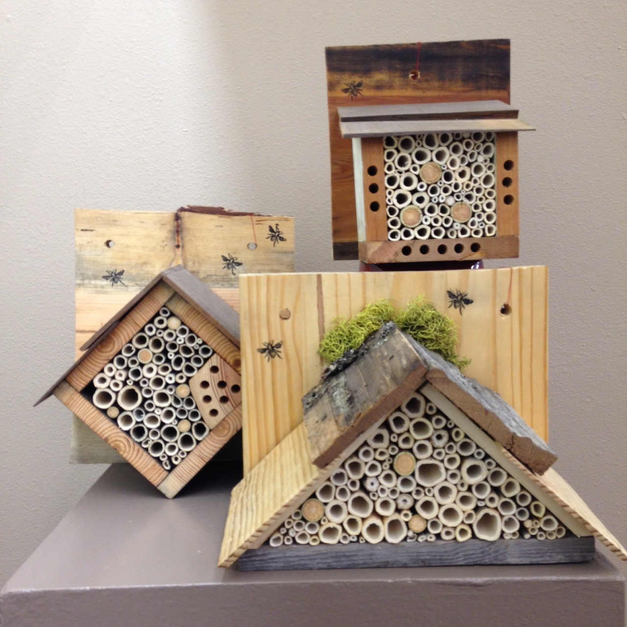 Leah's bee houses.JPG