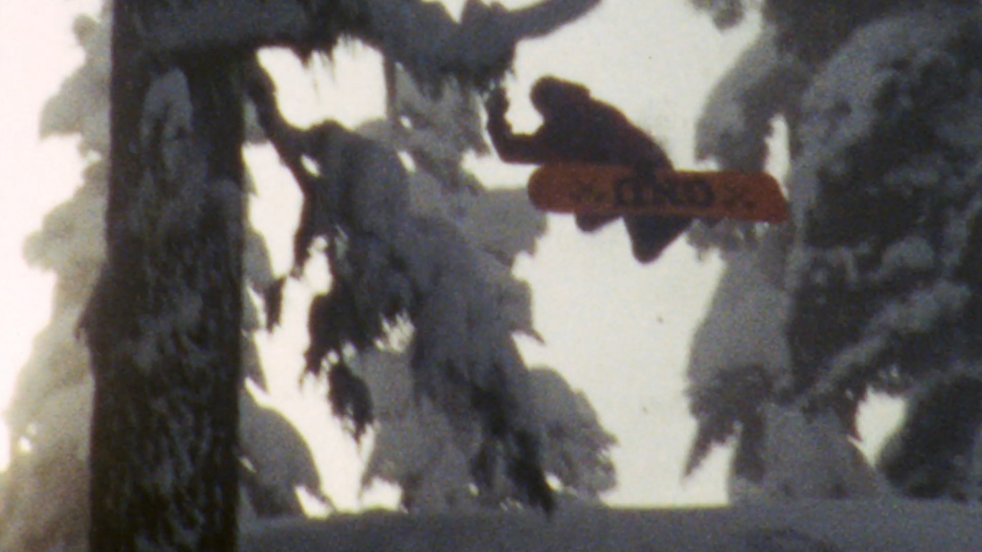 snowboarder hitting the slopes in the odd season