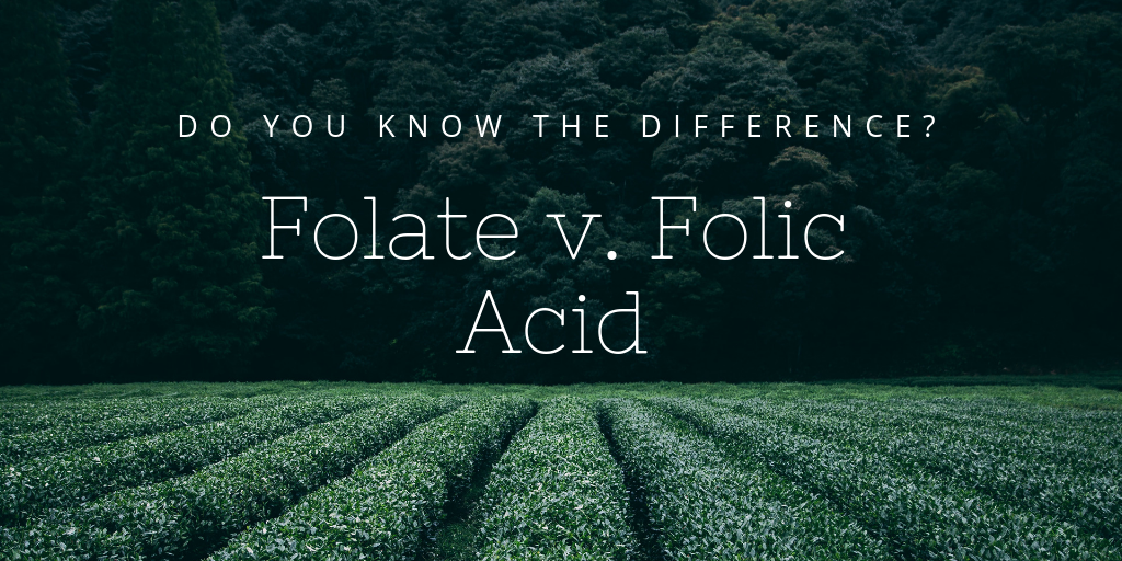 folate vs. folic acid (2).png