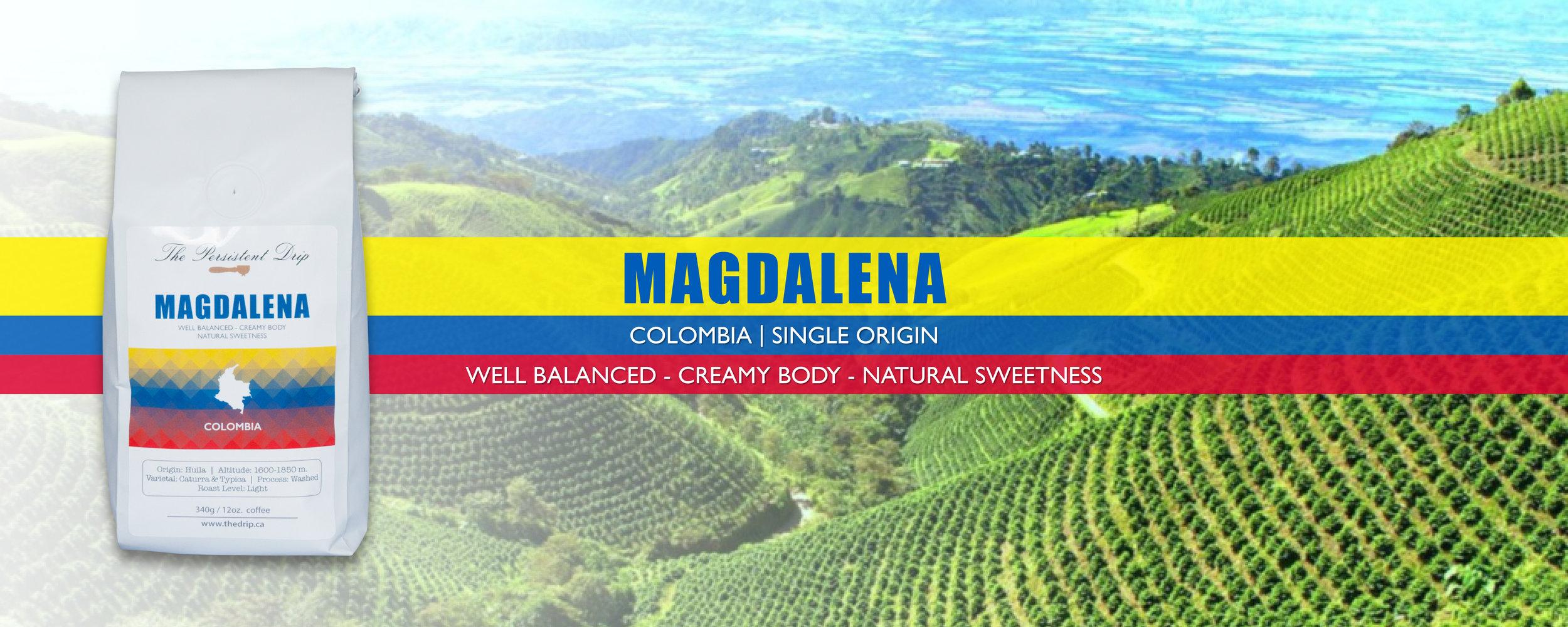 Banner-C-Magdalena.jpg