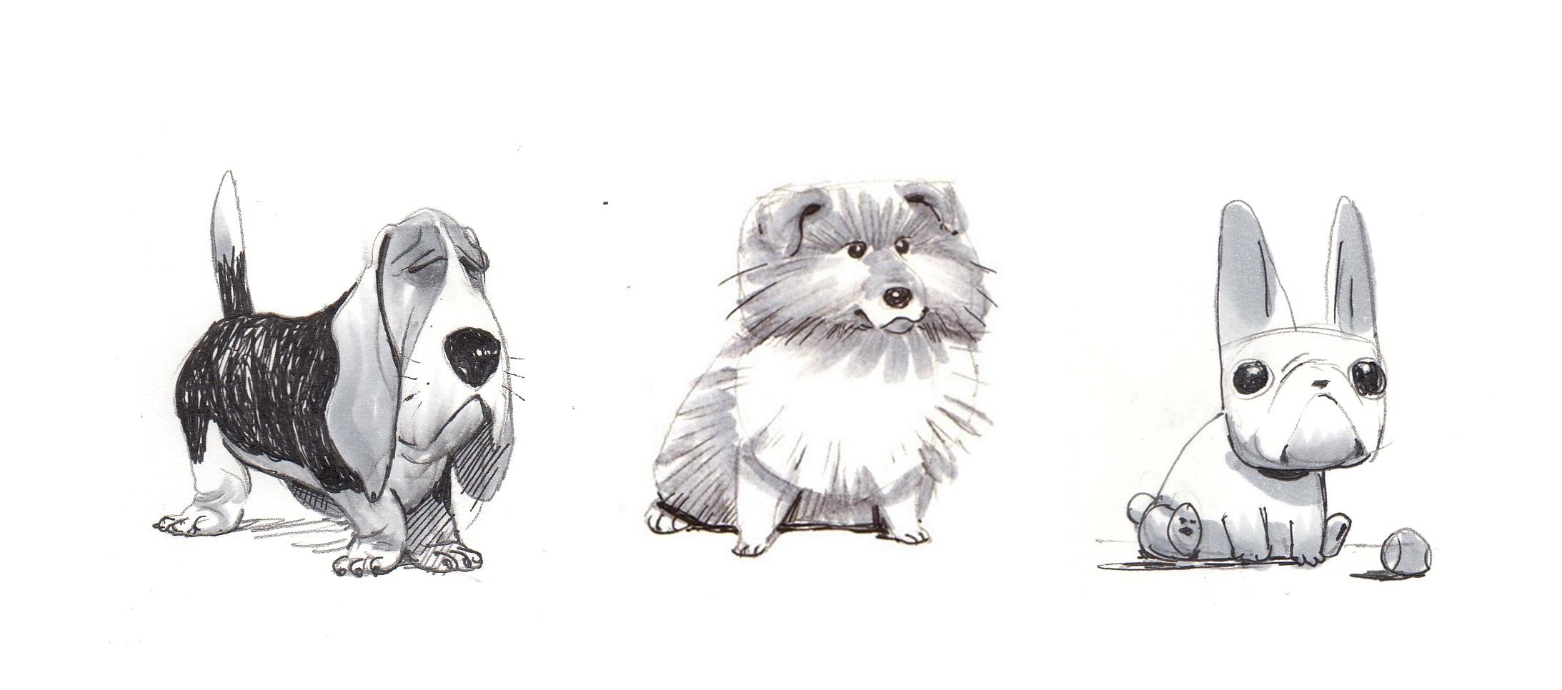 doggie4.jpg