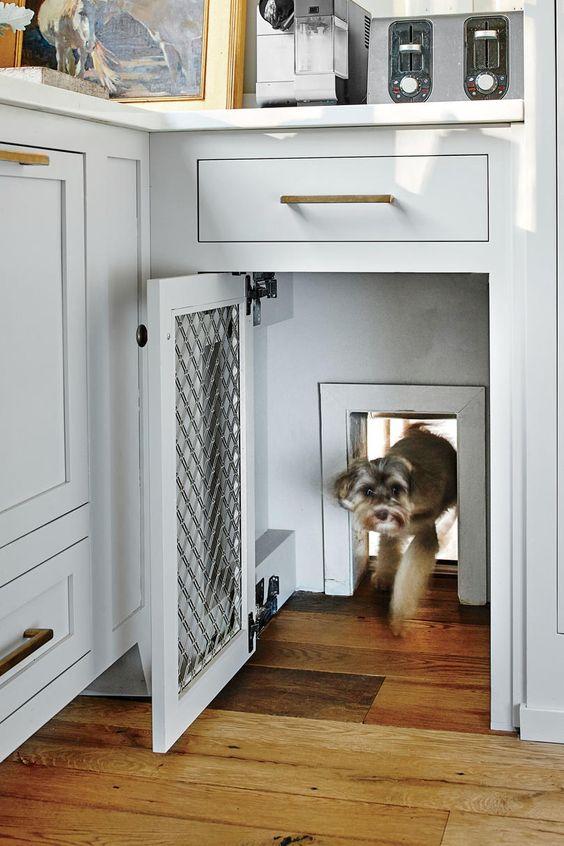 A Stylish Doggie Door