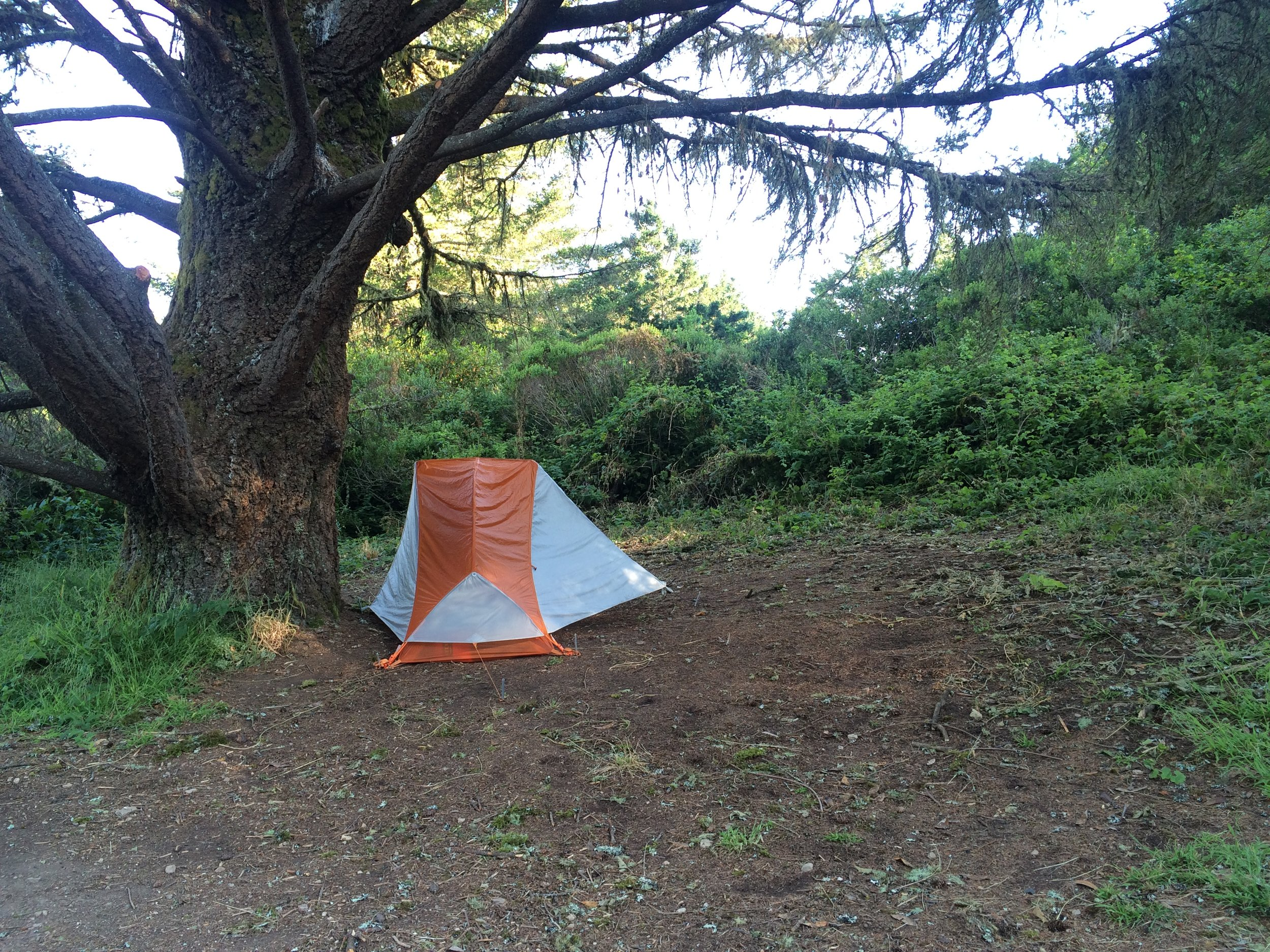 Setting up camp at Sky Camp, Point Reyes National Seashore. Image by Gitanjali Bhattacharjee.
