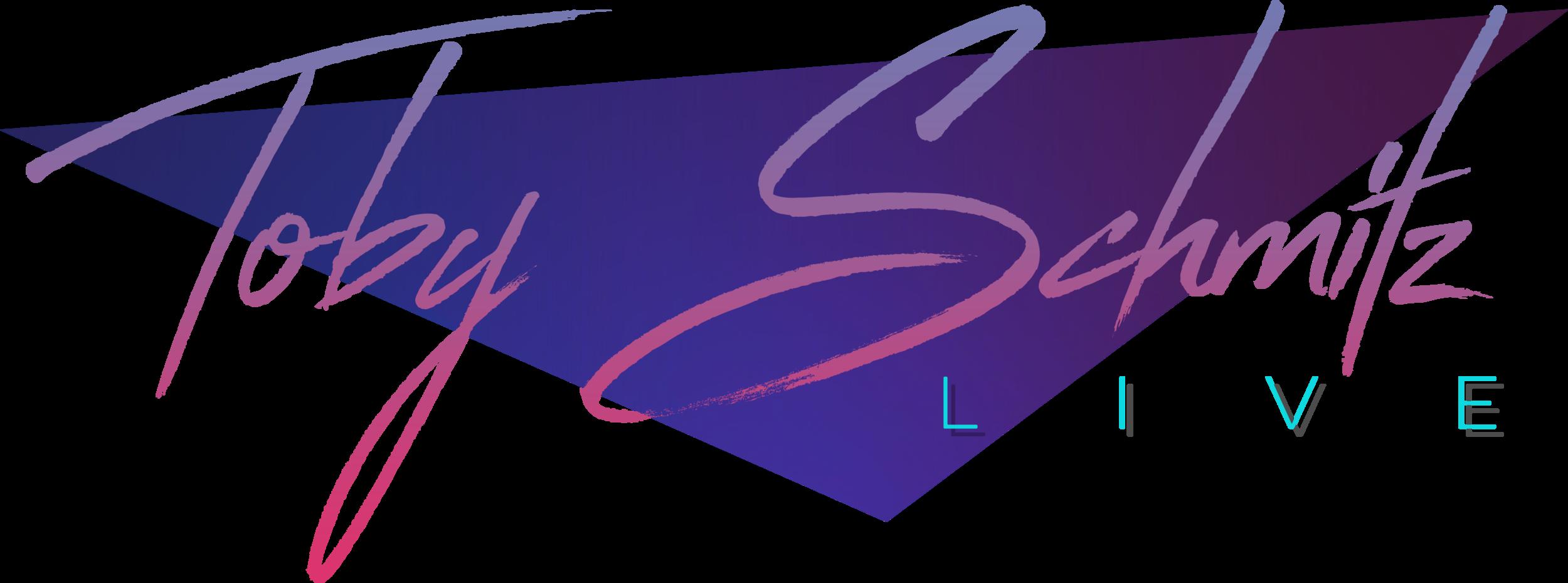 Schmitz Live Logo Only Transparent (midnight).png