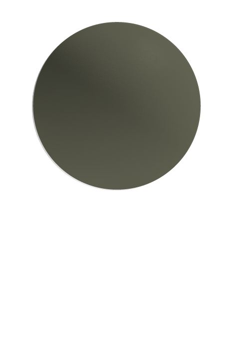 Copy of MANGROVE (S)