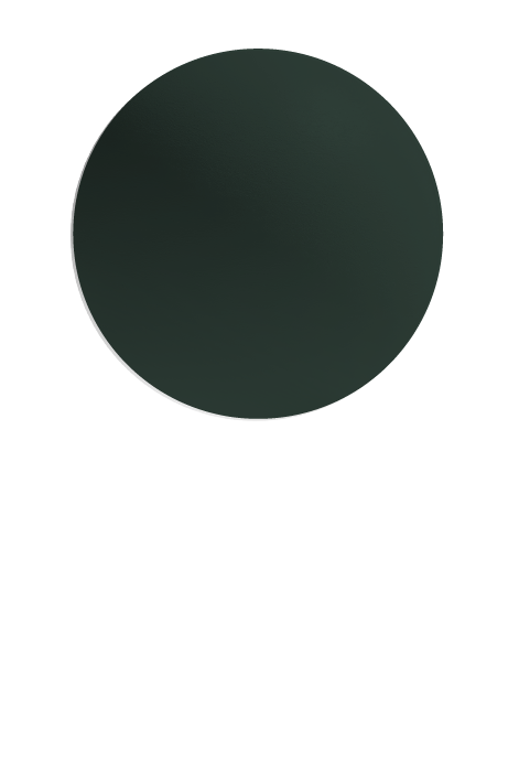 Copy of BRUNSWICK (G)