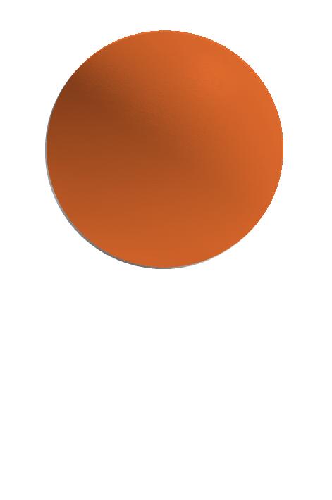 Copy of ORANGE X15 (G)