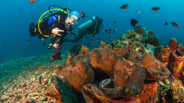 Lembeh_Diving_007.jpg