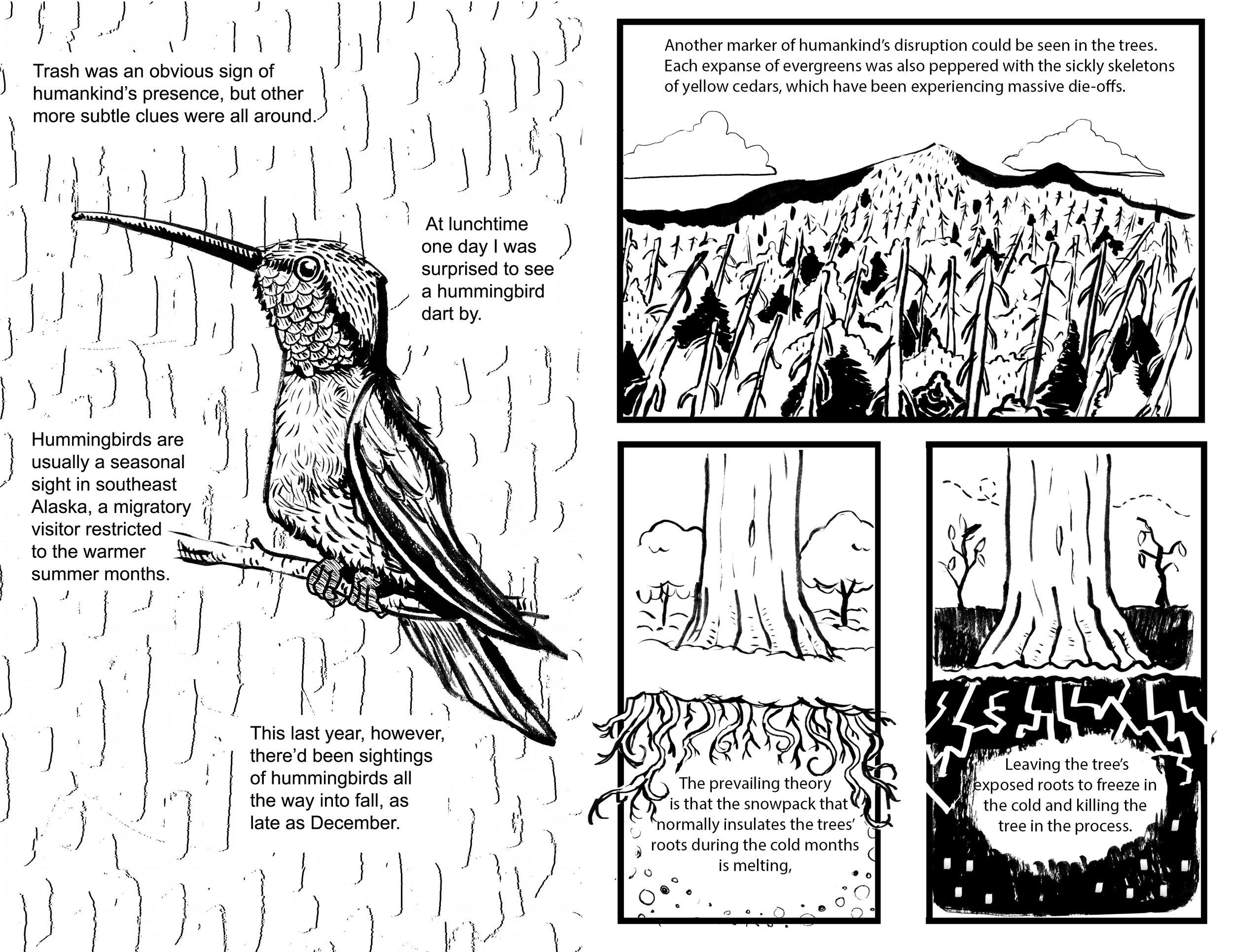pg 20-21.jpg
