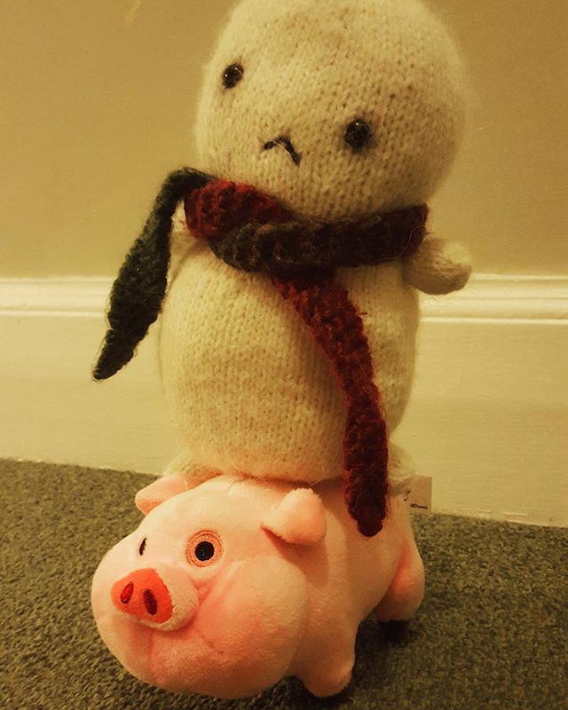 Riding #waddles for a night of #adorable adventure! #gravityfalls #pig #adventure #friendship