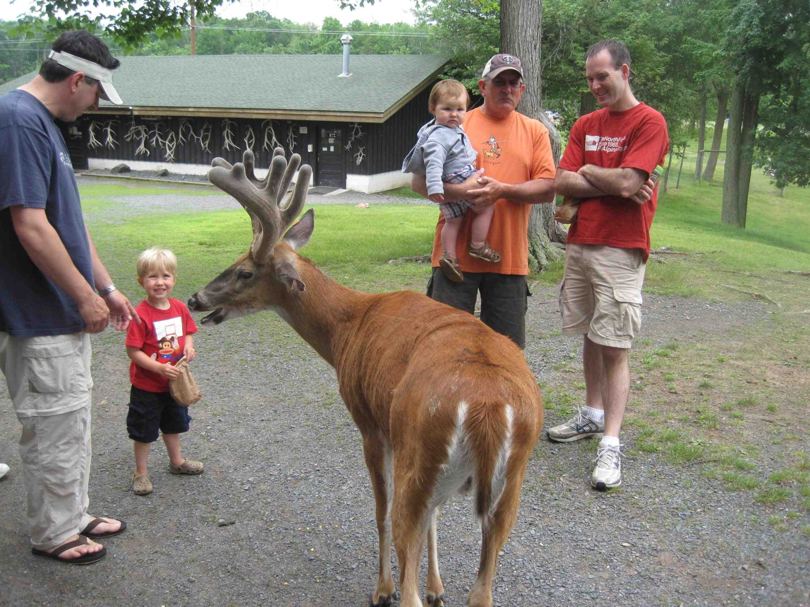 Bring the family to Fawn-Doe-Rosa