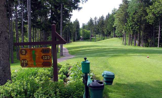 Several local Golf Courses