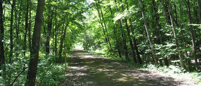 Gandy Dancer Trail