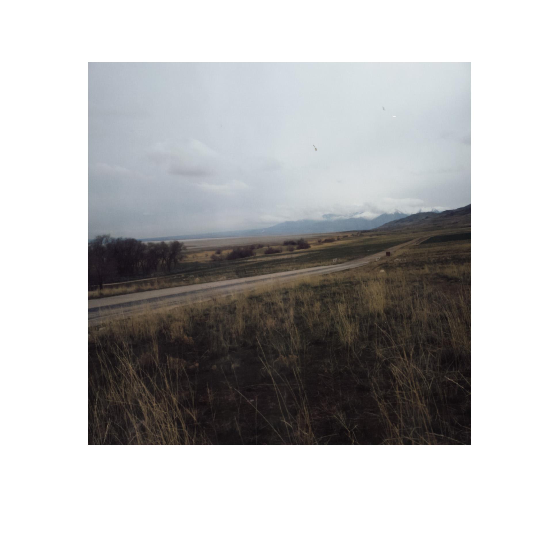 Peeling Polaroids-13.jpg