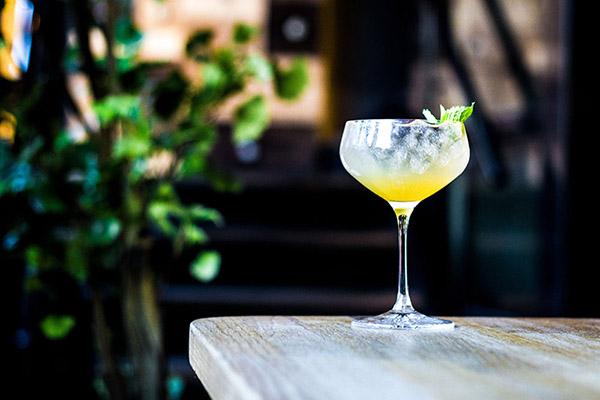 drinker-oslo-nedre-løkka