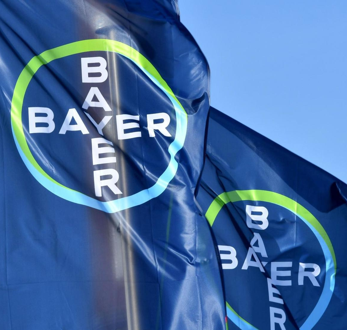 Bayer employer branding campaign strategy and concept. Bijan 2017.