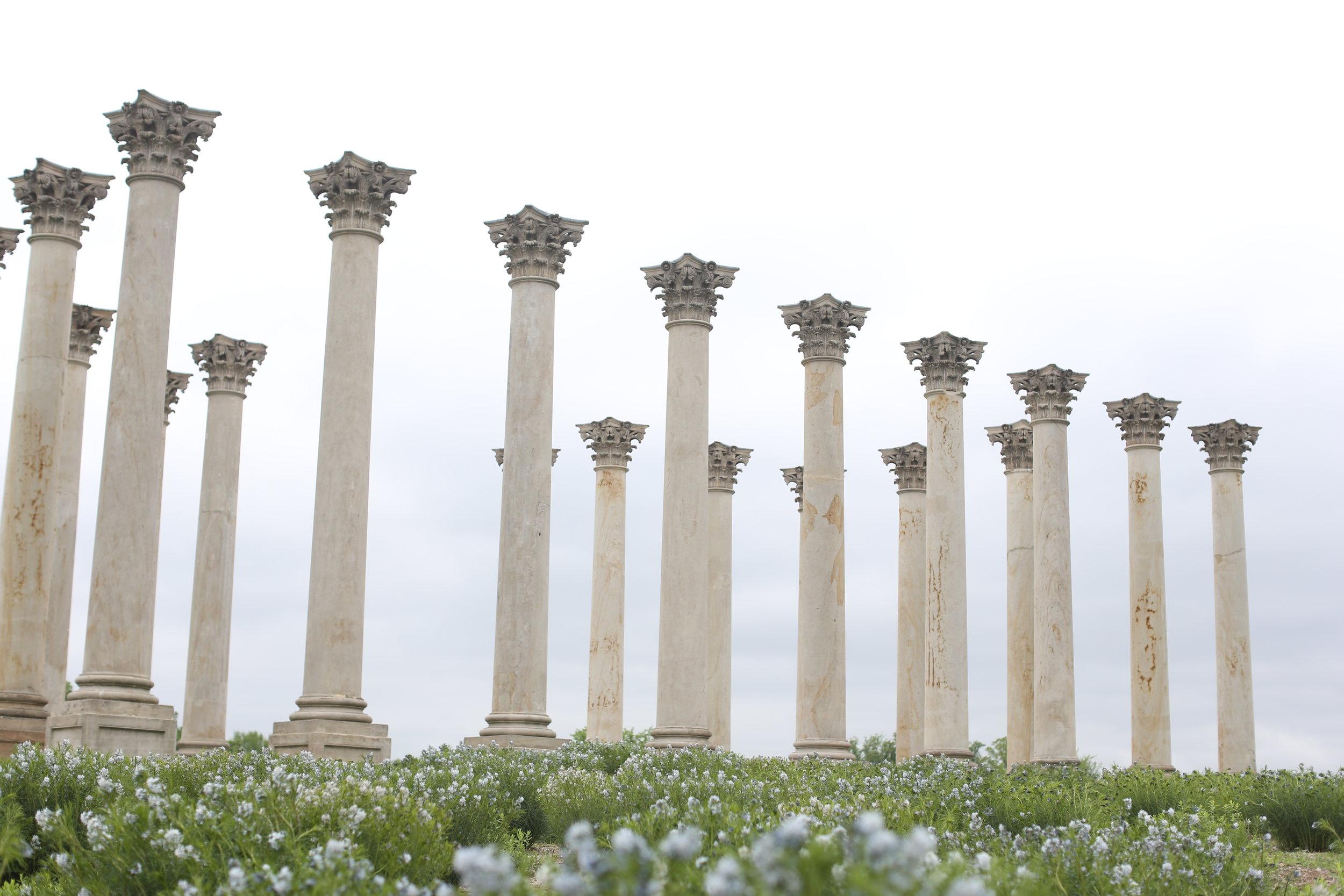 Old Capital columns at the Arboretum.