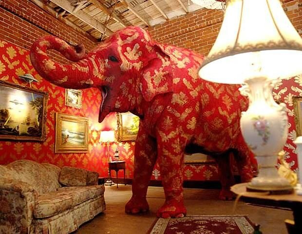 Banksy's Elephant in the Room