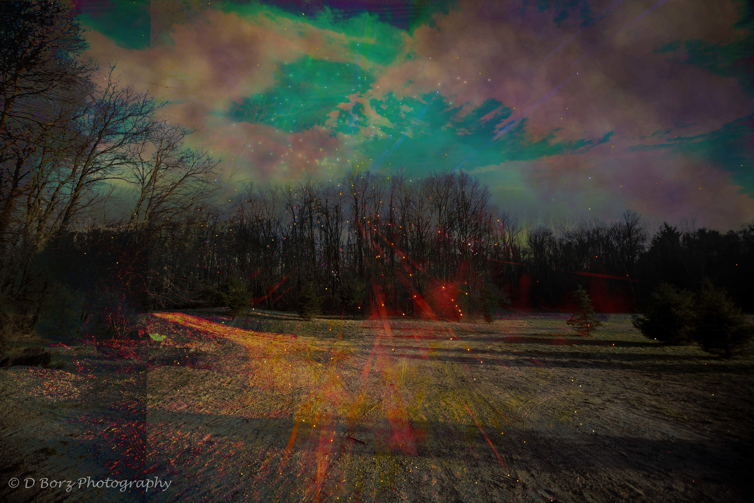 borzkowski_d_soundscape-13.jpg
