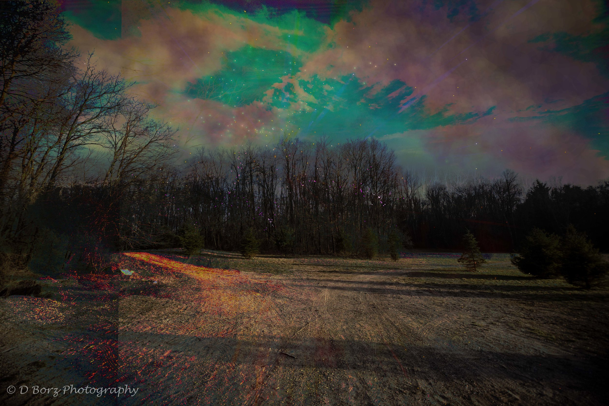 borzkowski_d_soundscape-14.jpg