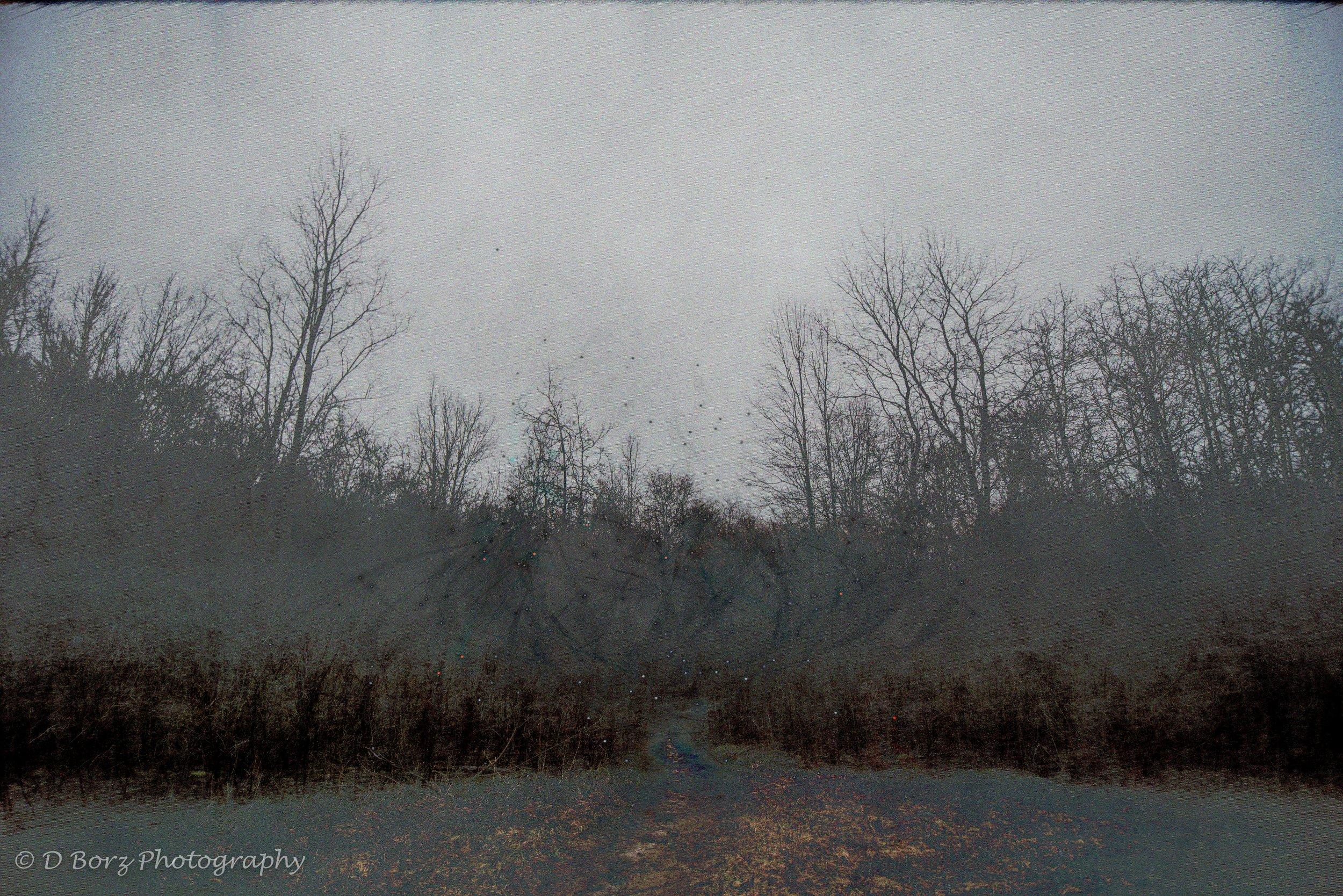 borzkowski_d_soundscape-23.jpg