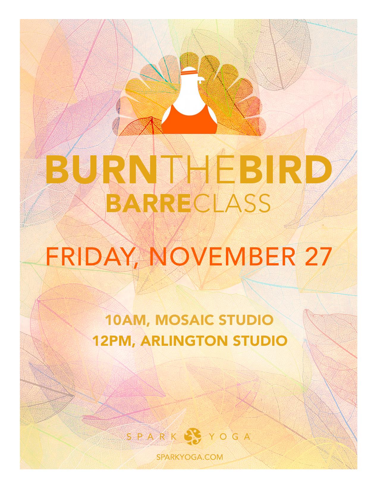 BurnTheBird_Poster_Nov2015.jpg