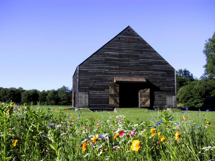 barn-flowers