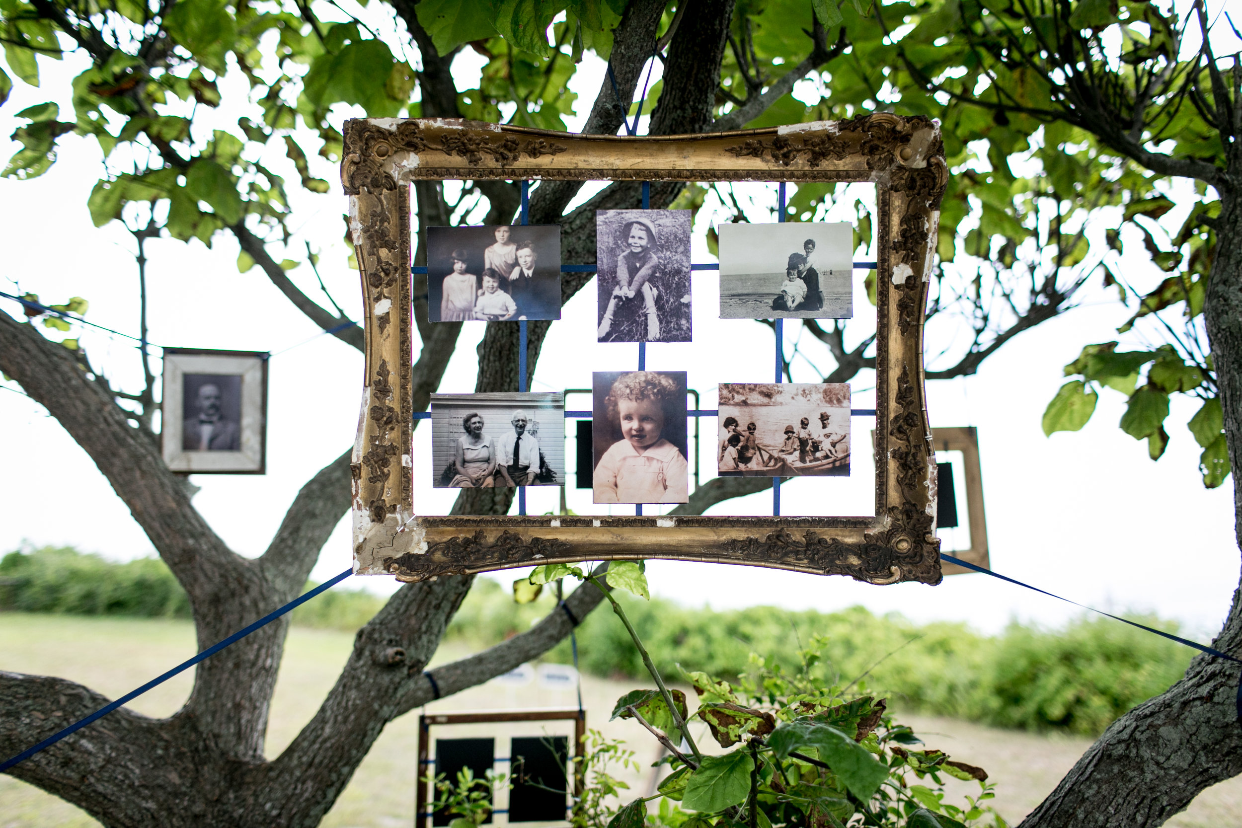 Tree of family photos. Ashley Douglass Events, CT Wedding Planner with Brookelyn Photography.