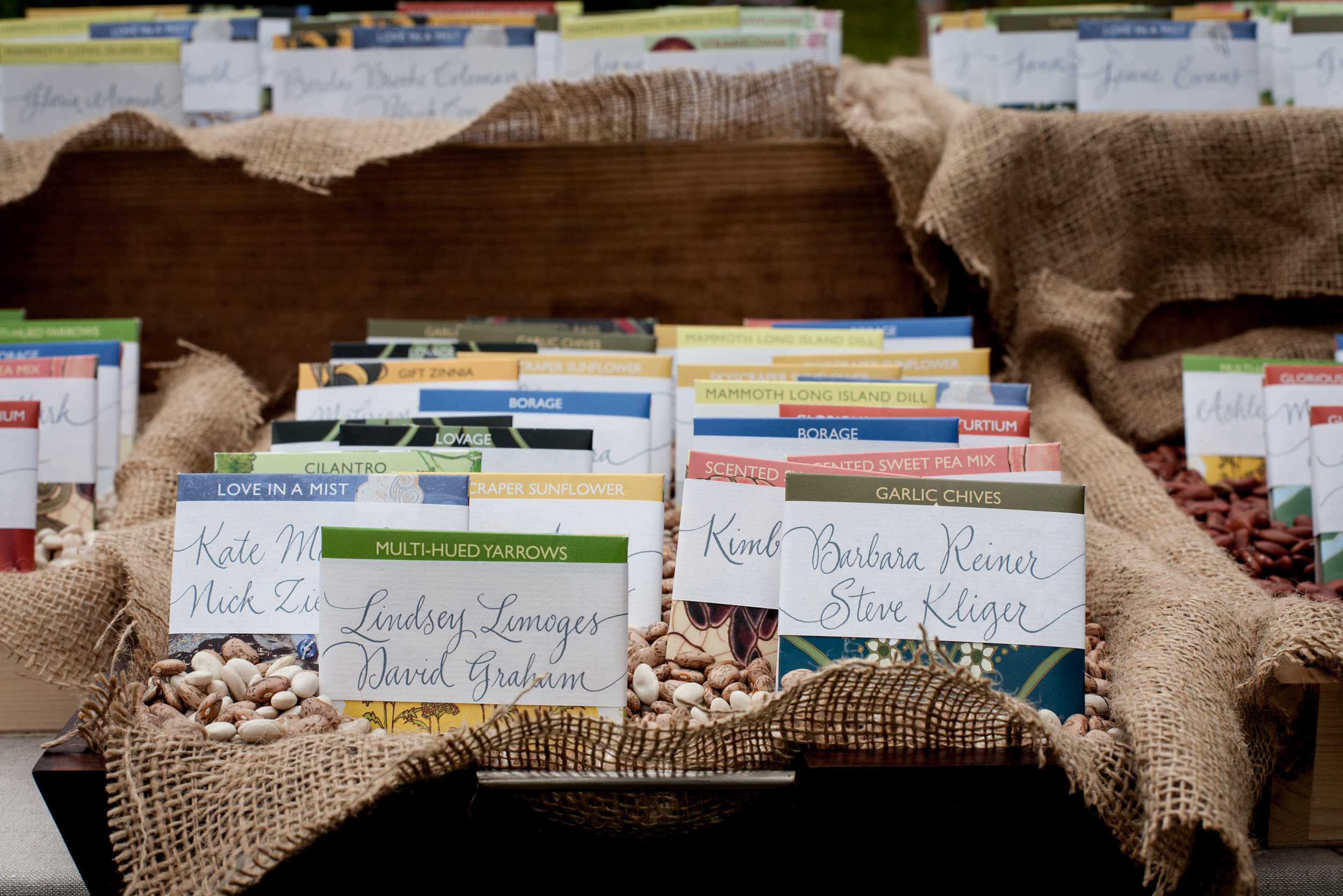 Cathy Volpe Calligraphy by Lion in the Sun on Hudson Valley Seeding Company seed packets!