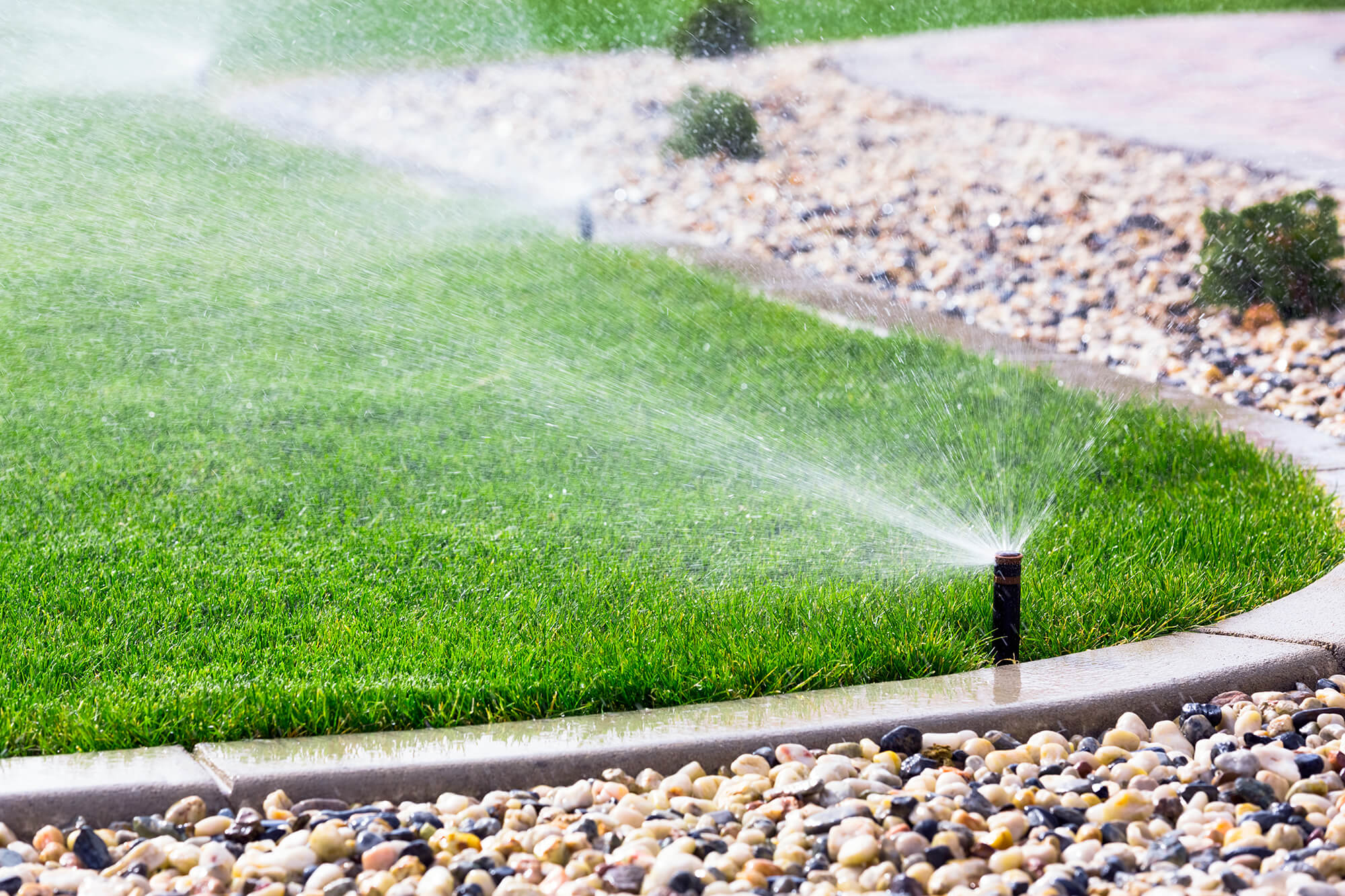 Artistic-Outdoor-Landscapes-Irrigation-Installation